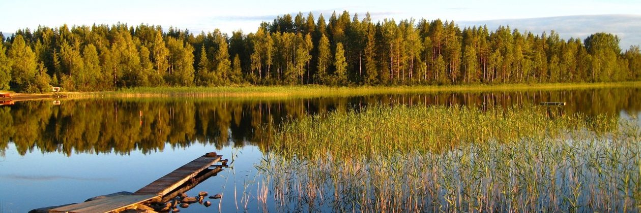 Schwedentraum – Erfahrungsbericht einer Auswanderung