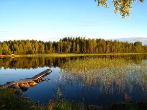 7 Dinge die du nicht ueber Schweden wusstest